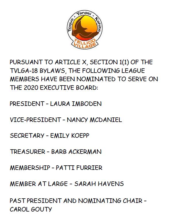 2020 TVLGA-18 Board Nominations
